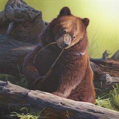 Derek Wicks Mischief's Bruin Grizzly Bear