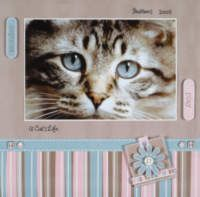 scrapbooking layouts, scrapbook ideas