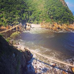 If you've always wanted to hike the Tsitsikamma but felt the Otter Trail was too daunting, then the Dolphin trail might be for you. The luxury… Otter, Storms, Hiking Trails, Proposal, South Africa, Most Beautiful, Bridge, Backpack, Southern