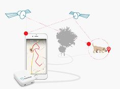 How Tractive GPS works ➔ Find out more