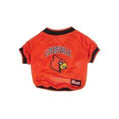95 Best Cardinals images  61f099c0a