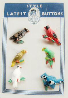 ButtonArtMuseum.com - Vintage Plastic Bird Buttons on Original Card