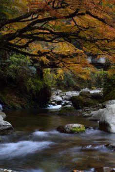 Kidani Gorge, Iwakuni, Yamaguchi, Japan