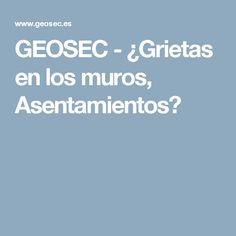 GEOSEC - ¿Grietas en los muros, Asentamientos?