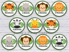 Zoo Animals Banner, 12 Month Photo Banner, Jungle First Year Banner Clips, Noah's Ark Clothespin Ban