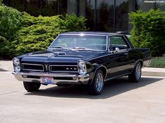 There's always one that's here to screw up the program.: Pontiac GTO 2