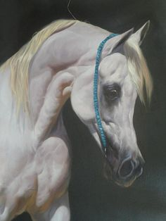 my painting by on deviantART Colored Pencil Artwork, Color Pencil Art, Pretty Horses, Beautiful Horses, Arabic Horse, Horse Sketch, Horse Face, Painted Pony, Horse Drawings