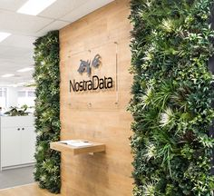 Office Plant Wall : Garden Beet's Meadow is used to divide an office space an. - Office Plant Wall : Garden Beet's Meadow is used to divide an office space an… Office Entrance, Vertical Garden Wall, Artificial Plant Wall, Office Plants, Office Walls, Office Bathroom, Concrete Wall, Outdoor Areas, Melbourne