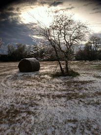 Snow near Beebe