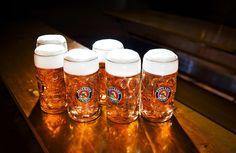 Paulaner Oktoberfest Märzen, the Wiesn's most popular beer Paulaner Oktoberfest, Oktoberfest Party, Beer Brewing, Home Brewing, Cerveza Paulaner, Most Popular Beers, Barris, Beer Week, Beer Festival
