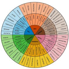 "Emotions Wheel.  I receive a lot of questions about how to address emotional intelligence (EQ) and build emotional resilience in coachees. For example, whenever I share the ""Gaps"" framework, I'm asked, ""How can I coach the emotional intelligence gaps that I've identified in my client?"" Coaches have to address emotions if we're going to help a client make meaningful, sustainable changes in his or her behaviors, beliefs, and being."