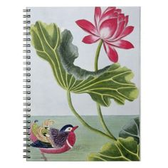 Chinese Red Water Lily, Volume I, plate 82, from ' Notebook https://www.zazzle.com/z/3sh47