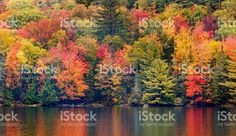 New England Autumn Foliage royalty-free stock photo