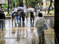 La lluvia. / Raining...