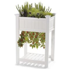 Kitchen Garden Planter.  Great idea for those who don't have room for a garden.