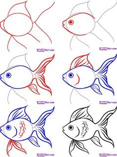Fish Drawings on Pinterest | Koi Fish Drawing, Fish Illustration ...