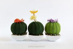 crochet amigurumi cactus - succulente a uncinetto - airali
