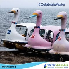 Keep the environment clean and the waters clear as crystal. #CelebrateWater www.watercheck.biz