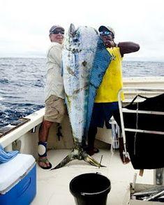 Huge mahi mahi! Go #fishing and read more at link.