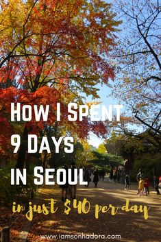 How to travel Seoul, South Korea in just $40 a day
