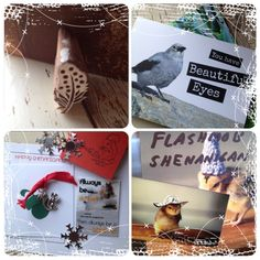"Marci says, ""Here are the rest of the shenanigans I received and my beautiful feather stamp from my sweet Secret Santa. I had so much fun! Thank you all!"""