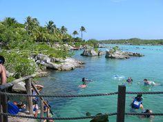 Hotel On Vacation te invita a conocer el acuario natural de San Andrés.