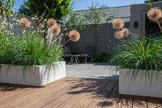 Outside Decorations, Interior Garden, Outdoor Living, Outdoor Decor, Garden Inspiration, Dream Big, Garden Design, New Homes, Home And Garden