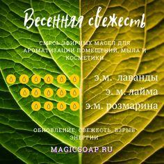 Green Magic, Doterra, Bath Bombs, Aromatherapy, Plant Leaves, Essential Oils, Fragrance, Perfume, Organic