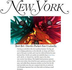 Davek in New York Magazine. Best Bet