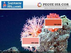 SW 6362 - Coral Bead | SW 6884 - Obstinate Orange
