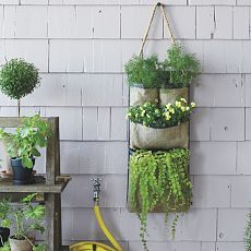 Hanging Bag Planter - old (or new) shoe- type over the door hanger with holes you make in back for drainage, choose some plants, plant them in the pockets and hang on the patio wall.
