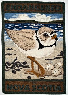 hooked by Bette Young - from a series on endangered animals of NS by a collective of rug hookers