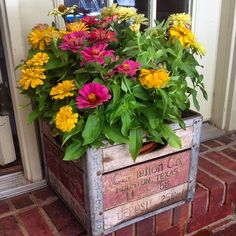 Zinnias in a milk crate. Sometimes the simplest things are the most beautiful. - Garden Style - Zinnias in a milk crate. Sometimes the simplest things are the Container Flowers, Container Plants, Container Gardening, Container Vegetables, Gardening Zones, Decorating With Junk, Porch Decorating, Zinnia Garden, Pot Jardin