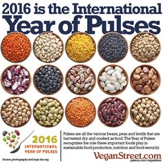 How can we feed the world? The United Nations' Food and Agriculture Organization believes a large part of the answer lies in all those beans, peas and lentils collectively known as pulses. And they've even gone so far as to declare 2016 to be the International Tear of Pulses. Celebrate by trying out some new pulse-based dishes and sharing them with friends.   http://veganstreet.com/dailymeme-1-6-16.html