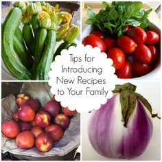 How to get your family to try new foods | by Foodie Goes Healthy: guest post on Eating Rules