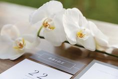 📷 Decor Style⠀ ⠀ The Creative Team⠀ Photography: @karenbucklephotography ⠀ Styling: @clweddingsandevents ⠀ Flowers: @gingerlilyrose ⠀ Cake: @cakedesignsweddingcakes ⠀ ⠀ #sunshinecoastbrides #sunshinecoastweddings #weddinginspiration #weddingphotography #wedding #weddingflowers #weddingstyling #weddingdecor https://www.instagram.com/p/BXTcQmPF_tG/ Sunshine Coast Brides www.sunshinecoastbrides.com.au