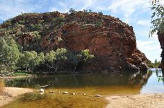 outback australia   - Explore the World with Travel Nerd Nici, one Country at a Time. http://TravelNerdNici.com