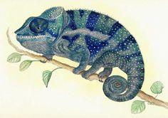 dibujar un camaleon - Buscar con Google