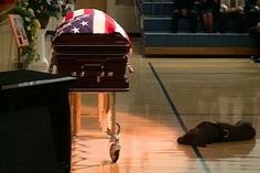 """Slain Navy SEAL Jon Tumilson's dog """"Hawkeye"""" lies next to his casket during funeral services in Rockford, Iowa. Tumilson was one of 30 American soldiers killed in Afghanistan on August 6 when their helicopter was shot down during a mission to help fellow troops who had come under fire."""