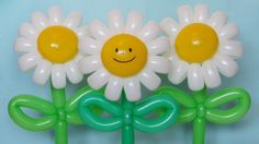 How to make a daisy flower (camomile) with twelve petals of twisting balloons - twisting tutorial. Designed by Sergey Loginov Balloon Toys, Balloon Crafts, One Balloon, Balloon Flowers, Balloon Columns, Balloon Wall, Balloon Bouquet, Balloon Centerpieces, Balloon Decorations