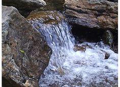Davidson River, Pisgah NF