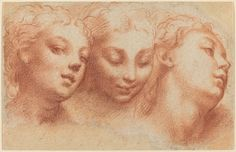 Parmigianino - Three Feminine Heads, c. 1522/1524
