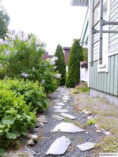 puutarha,piha,kesä,polku,liuskekivet