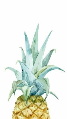 Pura Vida #acuarela #pineapple