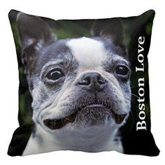 Frostie Bostie Boston Terrier Square Zippered Decorative Pillow Cover