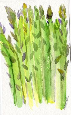 Asparagus Painting watercolor Vegetable Series by SharonFosterArt, $10.00