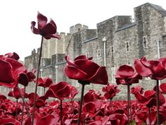 Tower of London poppies Military Art, Military History, Poppy Decor, Poppy Wreath, Remembrance Day Poppy, French Nursery, Wedding Couple Photos, Lest We Forget, Tower Of London