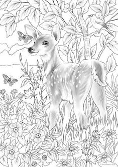 Baby Deer - Printable Adult Coloring Page from Favoreads Coloring book pages for adults and kids Coloring sheets Coloring designs Deer Coloring Pages, Spring Coloring Pages, Detailed Coloring Pages, Coloring Book Art, Printable Adult Coloring Pages, Coloring Sheets, Kids Coloring, Fairy Coloring, Mandala Coloring