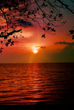 #View of a Sunset