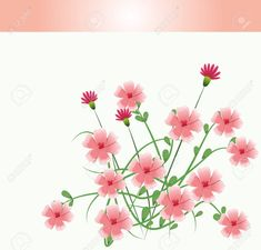Beautiful pink flowers with leaves vector illustration graphic design , #AFFILIATE, #flowers, #leaves, #Beautiful, #pink, #graphic